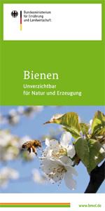 Bienen – Unverzichtbar für Natur und Erzeugung