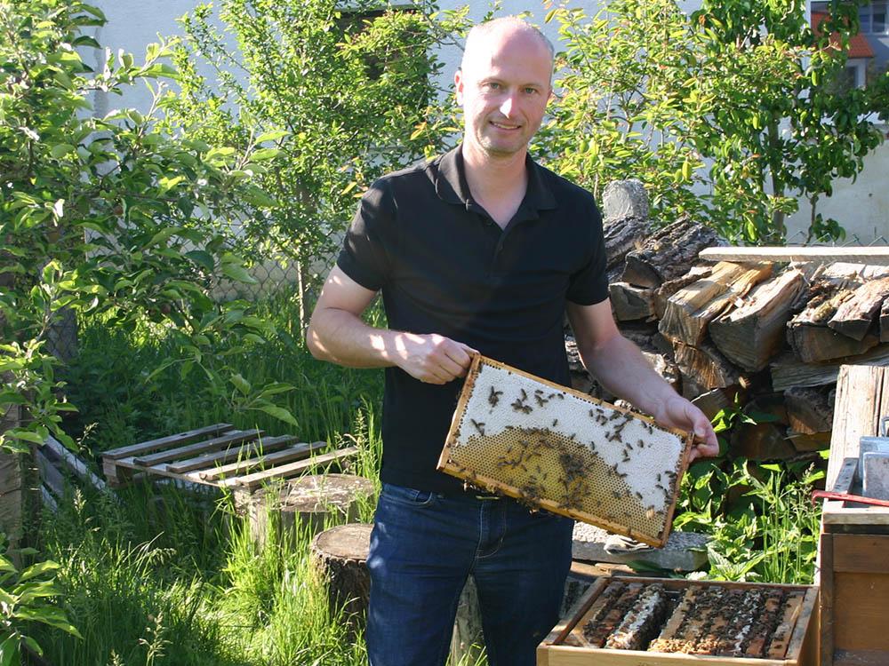 Kontrolle bei meinen Bienen