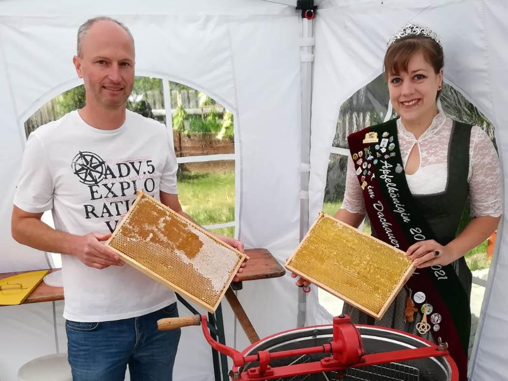 Apfelkönigin Sophie I half beim Honig ernten
